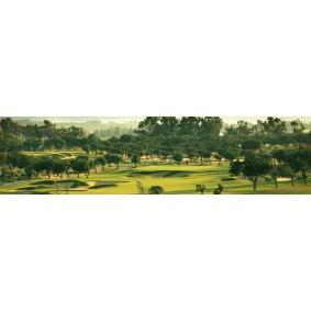 Cyprus - Golfvakanties Europa - kopen - Alexander The Great Hotel