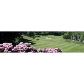 Golfvakanties Europa - Italië - kopen - Hotel Cortese