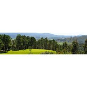 Golfvakanties Europa - Portugal - kopen - Axis Ponte de Lima Golf Hotel