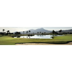 Golfvakanties Europa - Spanje - kopen - Appartementen Las Lomas
