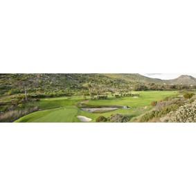 Golfvakanties buiten Europa - Zuid-Afrika - kopen - Combireis Vineyard Hotel/Oude Werf Hotel